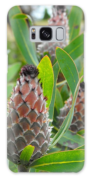 Mink Protea Flower Galaxy Case by Rebecca Margraf