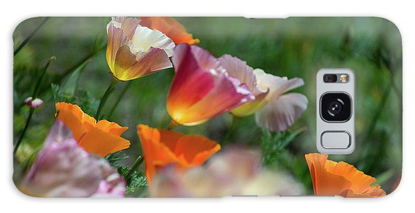 Mission Bell Poppies Galaxy Case