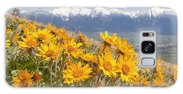 Mission Mountain Balsam Blooms Galaxy Case