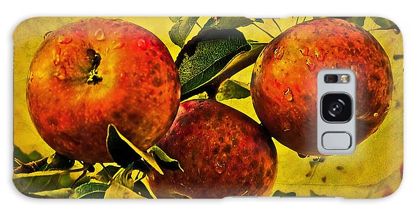 Mister's Apples Galaxy Case