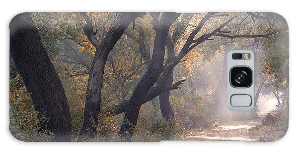Misty Morning, Bharatpur, 2005 Galaxy Case