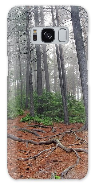 Misty Morning In An Algonquin Forest Galaxy Case