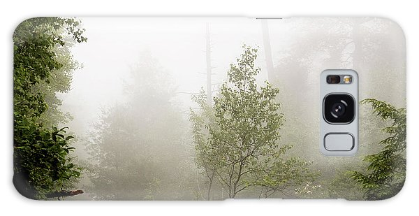 Misty Road At Forest Edge, Pocono Mountains, Pennsylvania Galaxy Case
