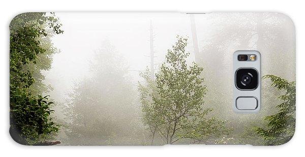 Misty Road At Forest Edge, Pocono Mountains, Pennsylvania Galaxy Case