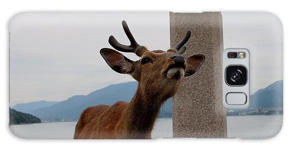 Miyajima Deer Galaxy Case