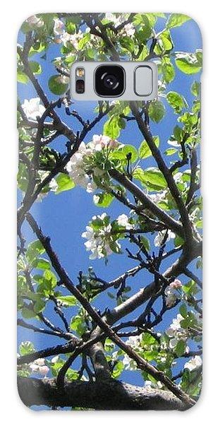 Mn Apple Blossoms Galaxy Case
