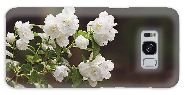 Galaxy Case featuring the photograph Mock Orange Blossoms by Kim Hojnacki