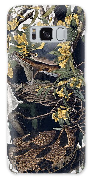 Mocking Birds And Rattlesnake Galaxy Case