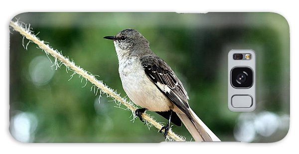 Mockingbird On Rope Galaxy Case