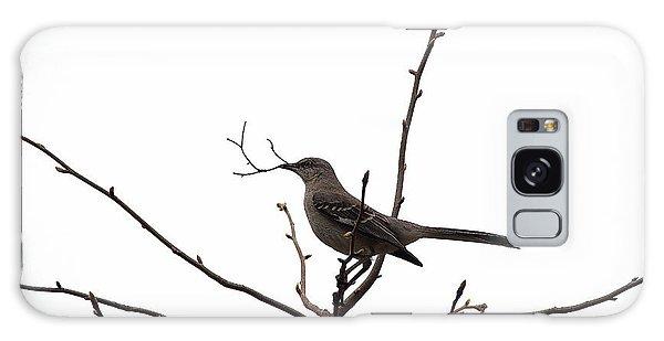 Mockingbird With Twig Galaxy Case
