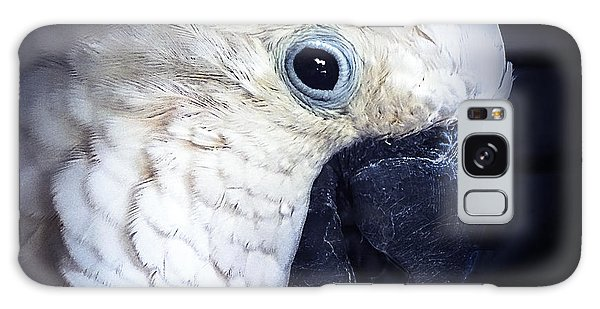 Moluccan Cockatoo Galaxy Case by Melissa Messick