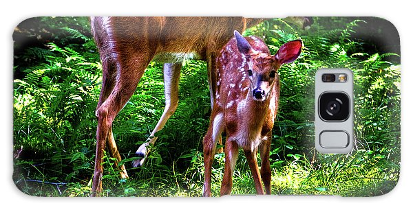 Galaxy Case featuring the photograph Mom And Fawn by David Patterson
