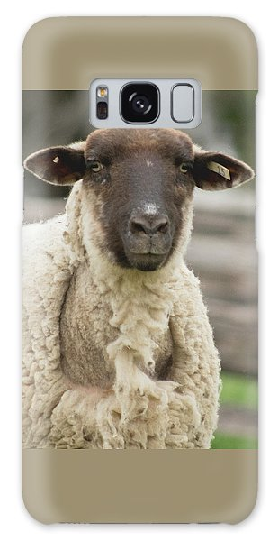 Moma Sheep Galaxy Case