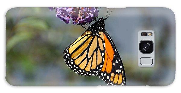 Monarch 2011 F Galaxy Case