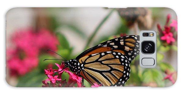 Monarch Butterfly On Fuchsia Galaxy Case