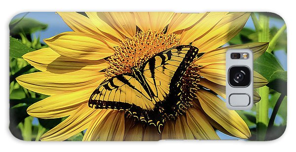 Male Eastern Tiger Swallowtail - Papilio Glaucus And Sunflower Galaxy Case