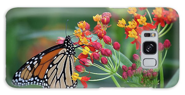 Monarch Butterfly Galaxy Case