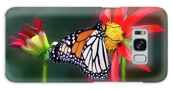 Monarch Butterfly Feasting On Dahlia 'kkk Katie' Galaxy Case