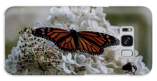 Monarch Butterfly Feeding On Hydrangea Tree Galaxy Case