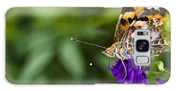 Monarch Butterfly Galaxy Case