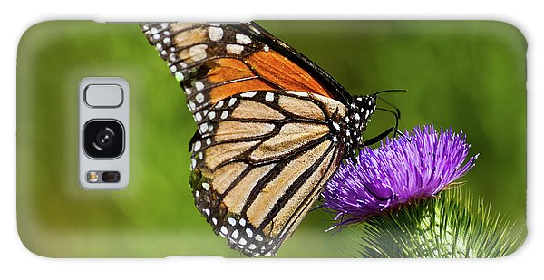 Monarch Butterfly On A Thistle Galaxy Case