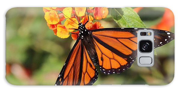 Monarch Butterfly On Orange Flower Galaxy Case