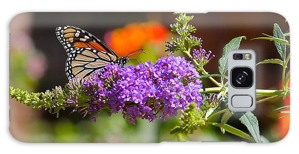 Monarch Butterfly On The Butterfly Bush Galaxy Case