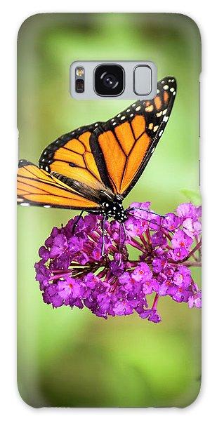 Monarch Moth On Buddleias Galaxy Case