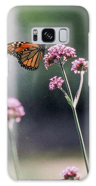 Monarch No. 7-1 Galaxy Case