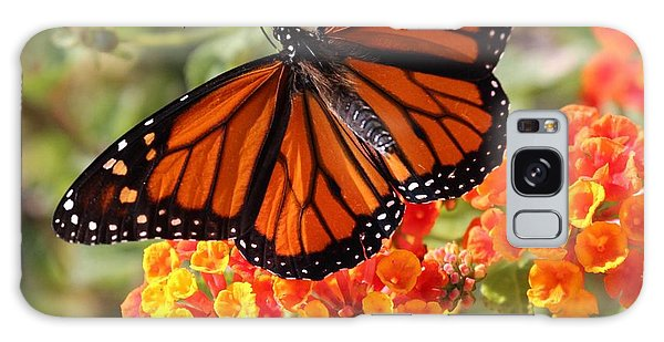 Monarch On 2 Flowers Galaxy Case