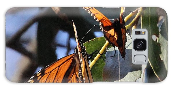 Monarch On Eucalyptus Galaxy Case