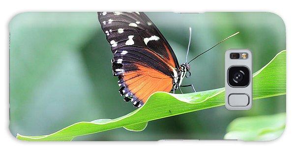 Monarch On Green Leaf Galaxy Case