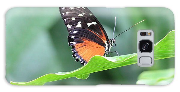 Monarch On Green Leaf Galaxy Case