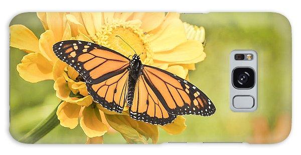 Monarch On Zinnia 5-2015 Galaxy Case