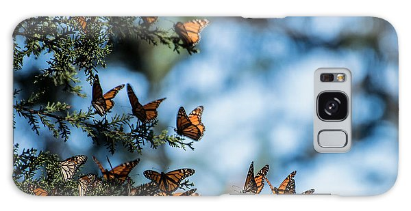 Monarchs In The Tree Galaxy Case