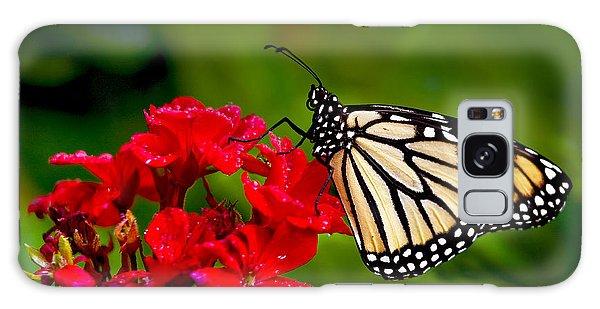 Monarh Butterfly Galaxy Case