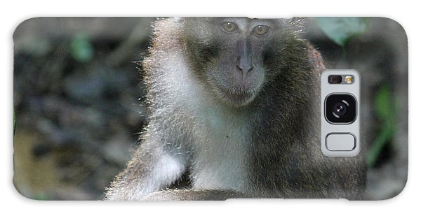 Monkey Business Galaxy Case