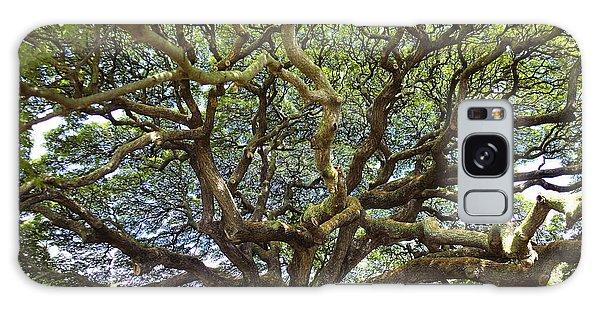 Monkey Pod Branches Galaxy Case