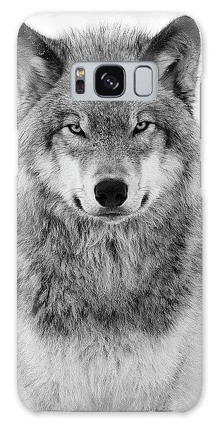 Wild Animals Galaxy Case - Monotone Timber Wolf  by Tony Beck