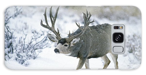 Monster Muley In Snow Galaxy Case