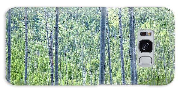 Montana Trees Galaxy Case