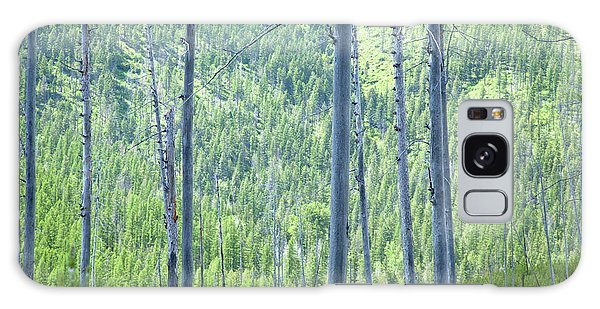 Montana Trees Galaxy Case