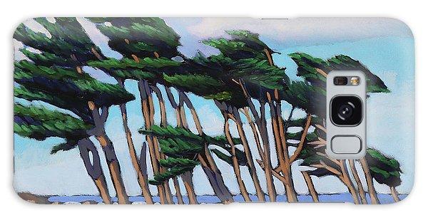 Monterey Cypress Row  Galaxy Case