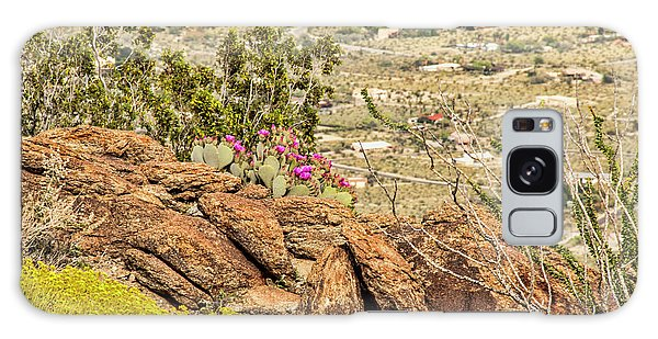 Montezuma Rd Cliff Side Flower Garden Galaxy Case