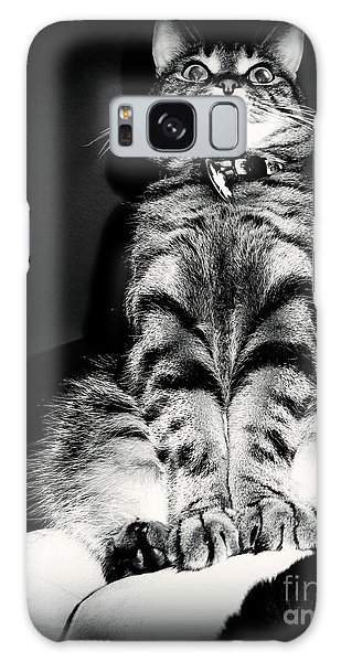Monty Our Precious Cat Galaxy Case