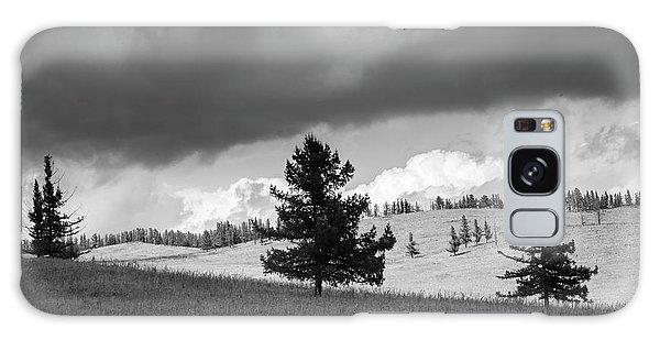 Moody Meadow, Tsenkher, 2016 Galaxy Case