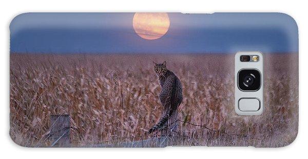 Moon Kitty  Galaxy Case