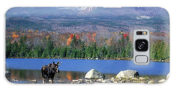 Moose And Mount Katahdin Galaxy Case