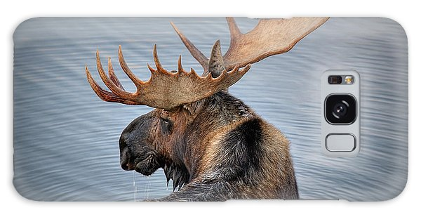Teton Galaxy Case - Moose Drool by Ryan Smith