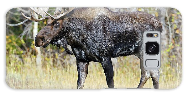 Moose On The Move Galaxy Case